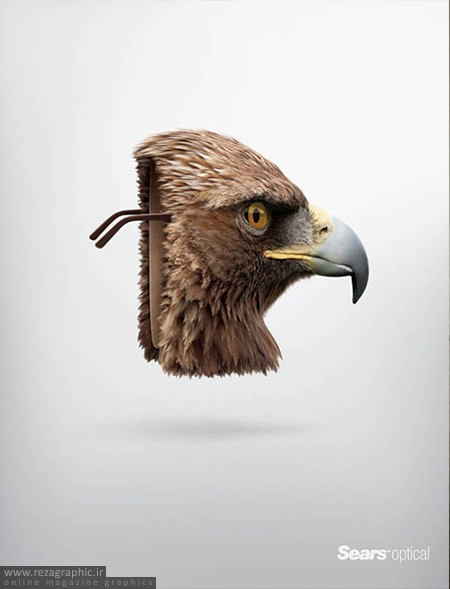 عقاب - Sears Optical: Eagle | رضاگرافیک
