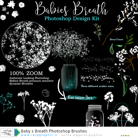 براش زیبا فتوشاپ - Baby s Breath Photoshop Brushes